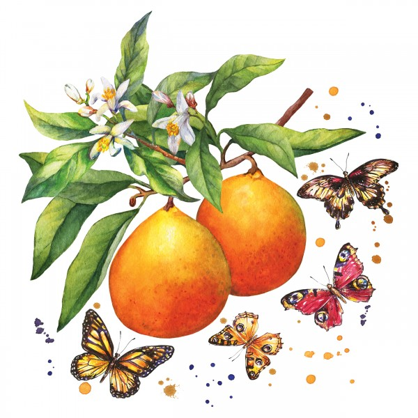 20 Cocktailservietten Fruity Butter – Schmetterlinge an Obst 24x24cm