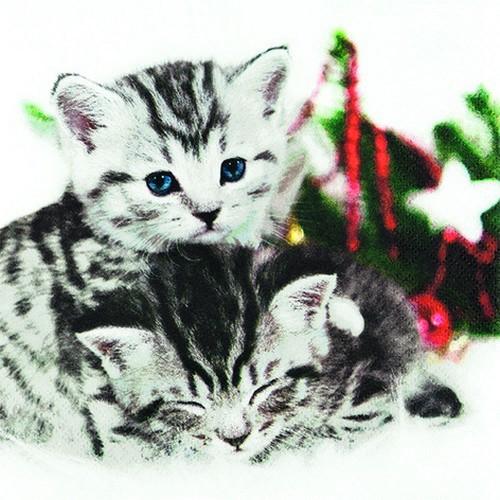 20 Servietten Christmas Cats 33x33cm