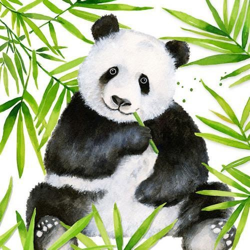 PPD Servietten Tropical Panda 33x33cm
