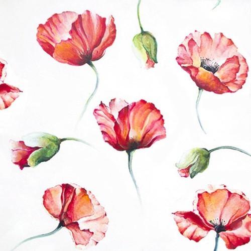 20 Servietten Poppy Drawing - Gemalte Mohnblumen 33x33cm