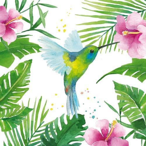 PPD Servietten Tropical Hummingbird 33x33cm