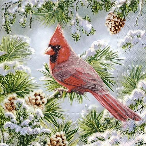 20 Servietten Red Cardinal 33x33cm
