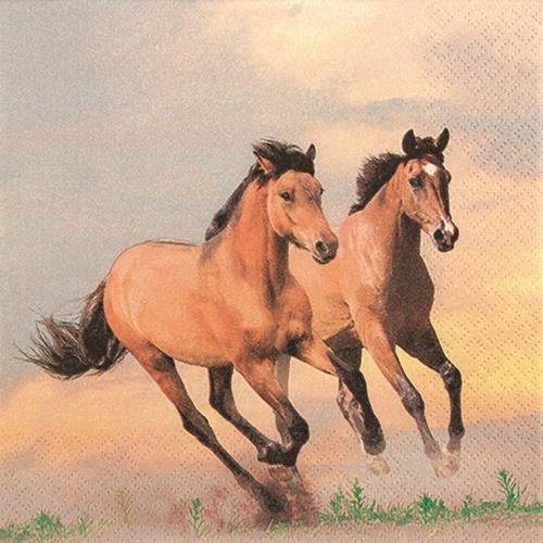 20 Servietten Wild Horses - Wilde Pferde 33x33cm