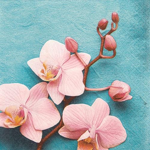 20 Servietten Rose Orchid - Rosa Orchidee 33x33cm