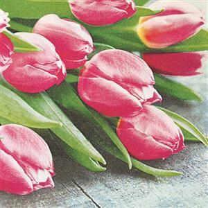 20 Servietten Pink tulips - Pinkfarbene Tulpen 33x33cm