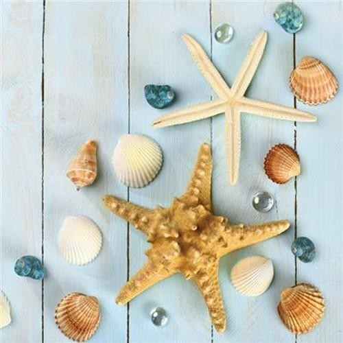 20 Servietten Sea Stars and Shells 33x33cm