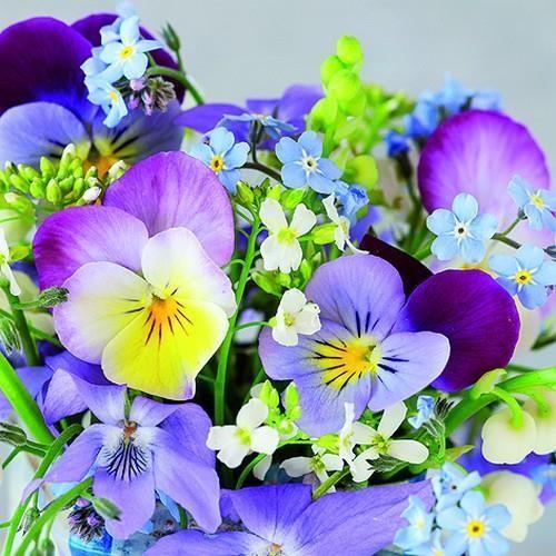 6 Servietten Gänseblümchen Serviettentechnik Motivservietten Strauß Blumen daisy