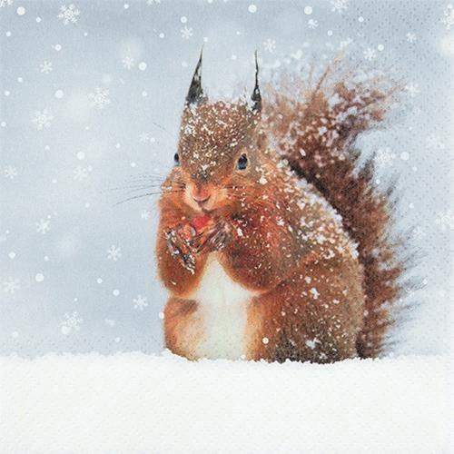 20 Servietten Snowy Squirrel 33x33cm