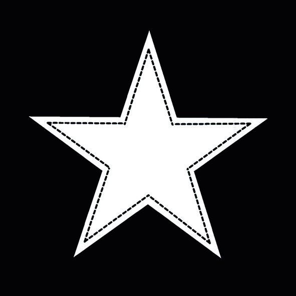 AV 20 Servietten Simple Star black - Stern weiß auf schwarz 33x33cm