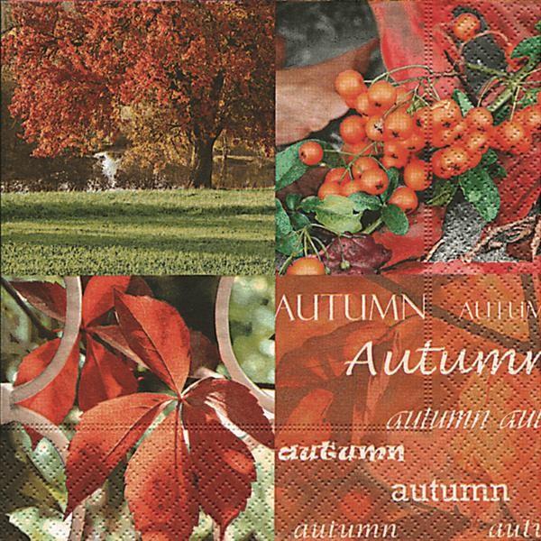 20 Servietten Autumn Nature - Herbstpracht 33x33cm