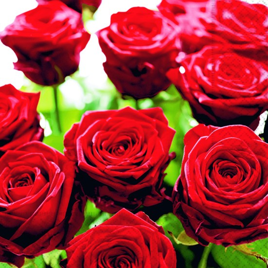20 Servietten Splendid Roses - Herrliche Rosen 33x33cm