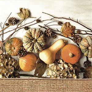 RP 20 Servietten Muddle of Pumpkins - Alles voller Kürbisse 33x33cm