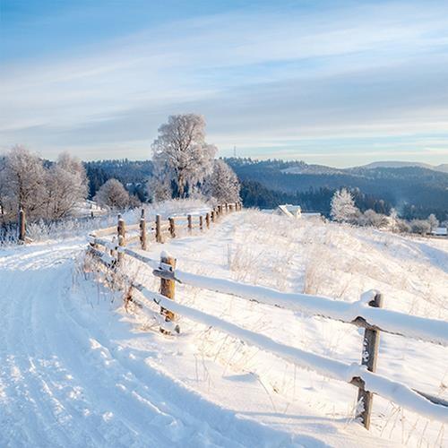 20 Servietten Winter Walk - Winterweg 33x33cm