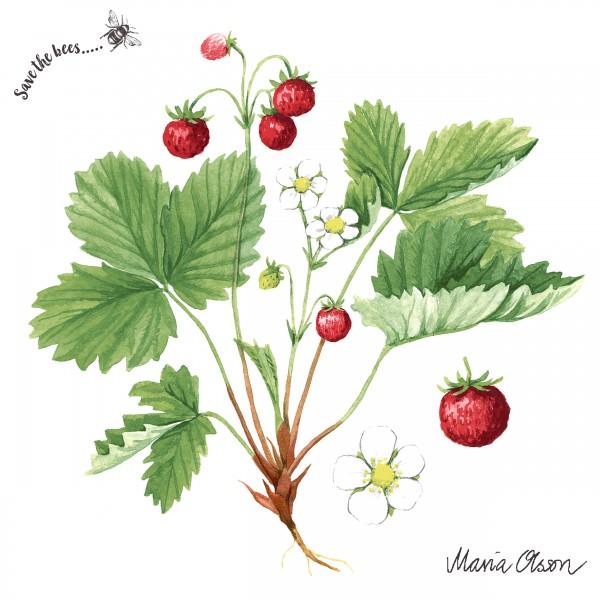 20 Cocktailservietten Wild Strawberry – Wilde Erdbeeren auf weiß 24x24cm
