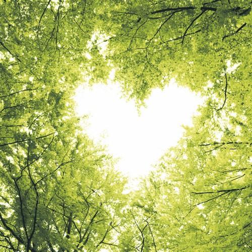 20 Servietten Nature Love 33x33cm
