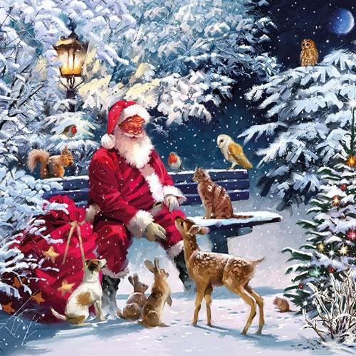 20 Servietten Santa on Bench 33x33cm