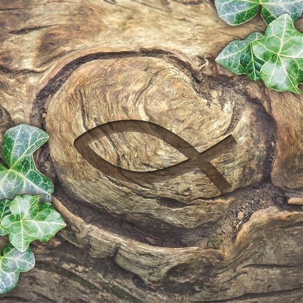 20 Servietten Ichthys in Wood 33x33cm