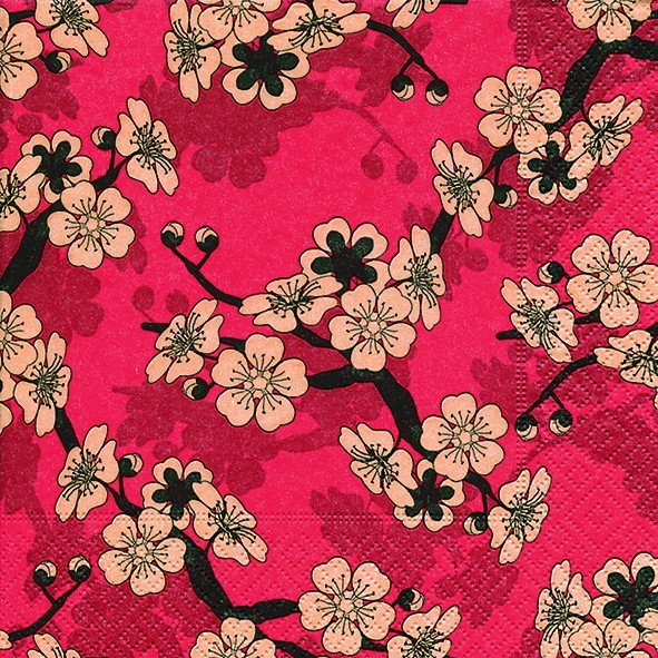 Http://www.cherrryblüten auf asia.com