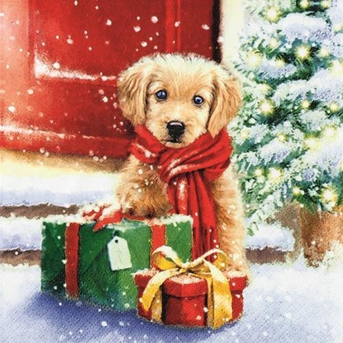 20 Servietten Little Puppy - Hund als Weihnachtsgeschenk 33x33cm