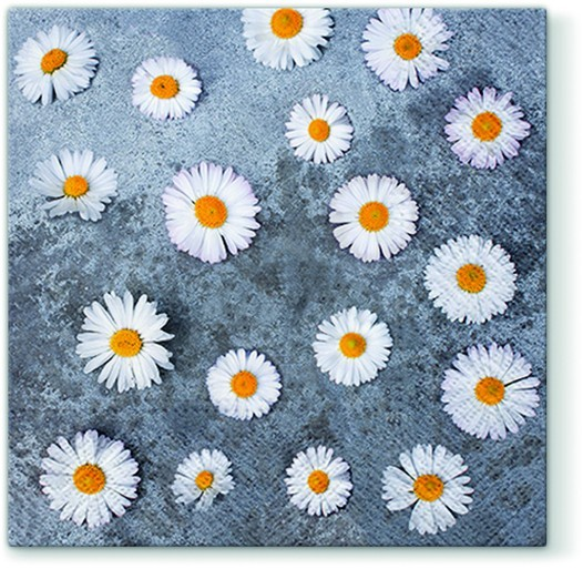 20 Servietten Daisies Love - Blüten von Gänseblümchen 33x33cm