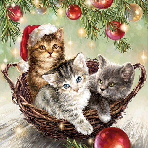 20 Servietten Cats in Basket 33x33cm