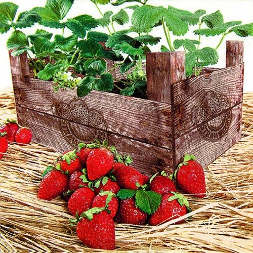 RP 20 Servietten Strawberry Case - Erdbeerkorb 33x33cm