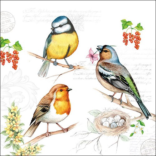 20 Servietten Birds on Twig 33x33cm