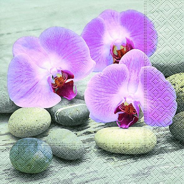 20 Servietten Orchids on Stones - Orchideen auf Steine 33x33cm