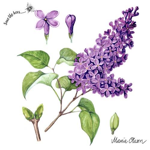20 Servietten Lilac - Flieder auf weiß 33x33cm