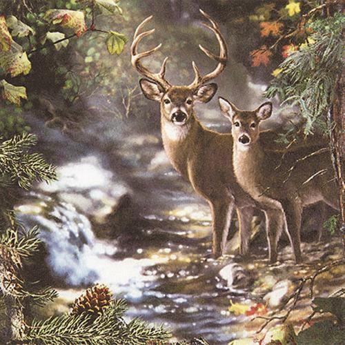 20 Servietten Deers on a creek - Hirsche am Bach 33x33cm