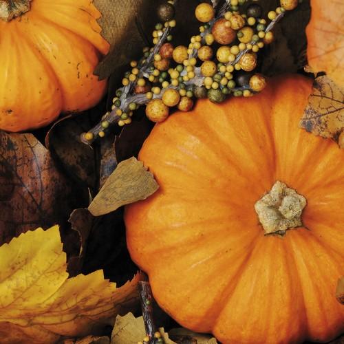 20 Servietten Fall Pumpkins 33x33cm