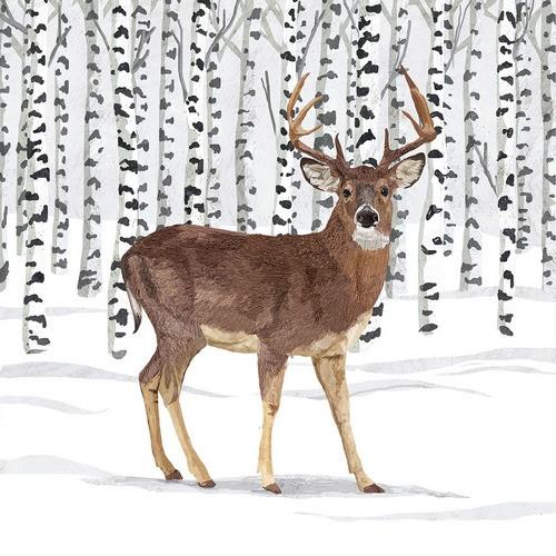 PPD Servietten Wilderness Stag 33x33cm