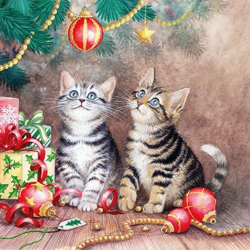20 Servietten Magic Of Christmas - Katzen bewundern den Weihnachtsbaum 33x33cm